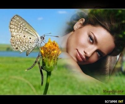 Flor Y Mariposa  Ademas A Pa  Ado De Un Hermoso Paisaje En El Fondo