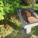 fotos-en-jardin