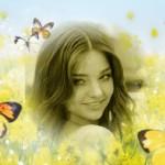editar-fotos-con-mariposas