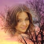 editar-fotos-en-arboles
