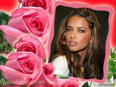 Editar fotos con rosas preciosas