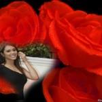Editar fotos con rosas rojas