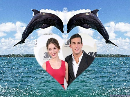 Editar hermosas fotos con delfines