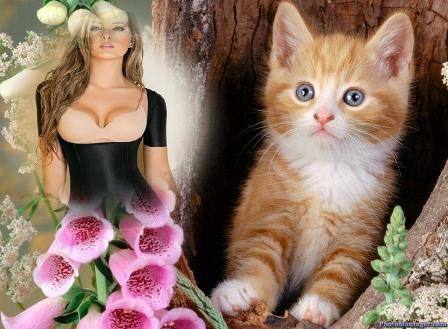 Hermosas fotos con gatitos