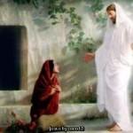 editar fotos con jesus