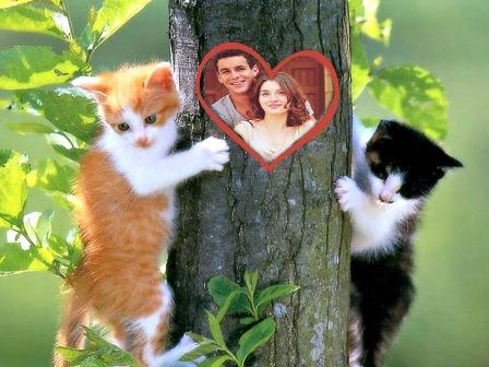 editar fotos para parejas