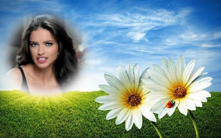 Editar fotos con flores bellas