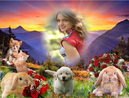 ediatr fotos con mascotas