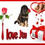 editar fotos con lindos detalles de amor