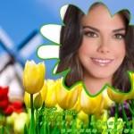 Decorar fotos con hermosas flores