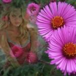 Editar fotos con hermosas flores