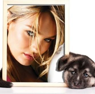 Efectos para fotos junto a un perrito