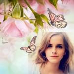 Editar fotos con bellas y delicadas rosas