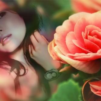 Editar fotos con una bella rosa naranja