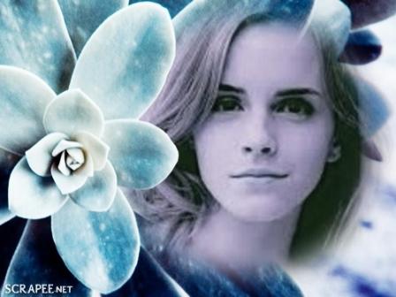 Editar fotos con una flor azulada
