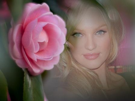 Editar fotos con una linda rosa