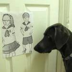 Editar fotos con un perrito